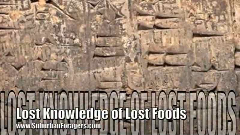 Lost Knowledge of Lost Foods