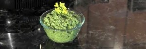 Pepperweed Pesto