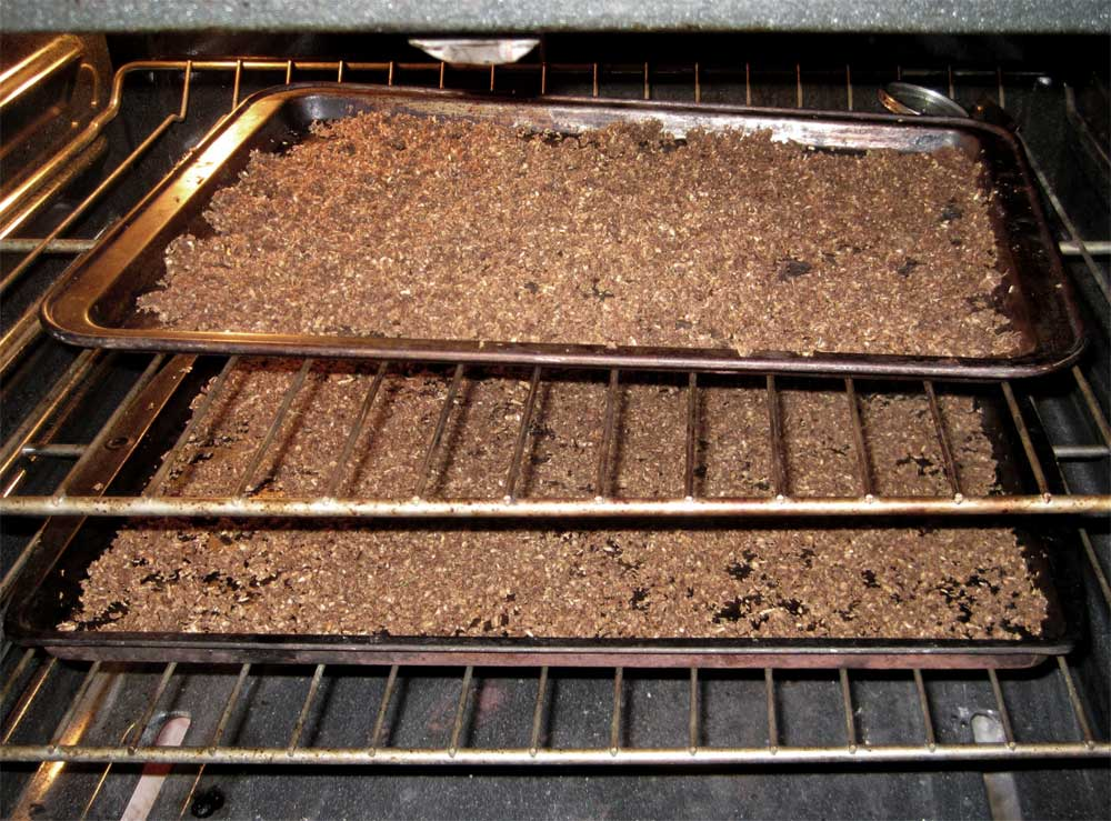 Oven drying dandelion roots