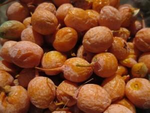 Ginkgo berries