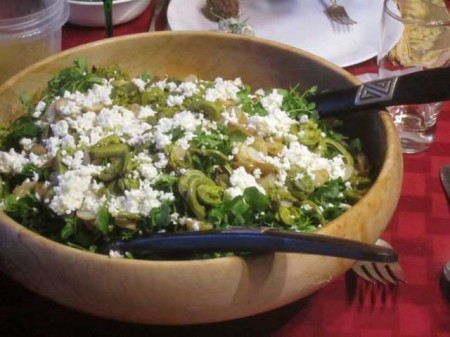 bittercress-salad